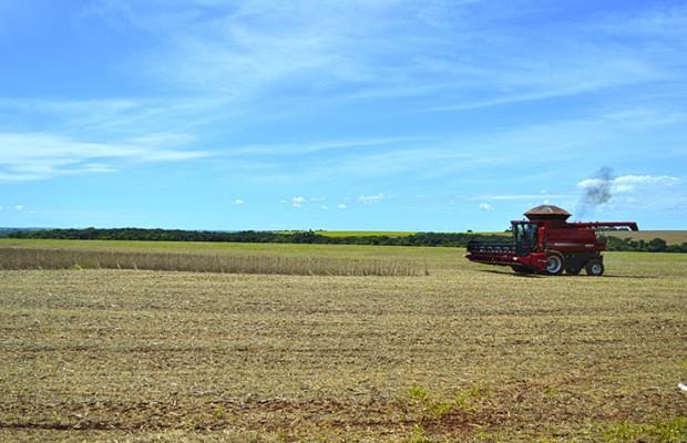 Colheita da soja atinge 10% em MS, alcançando 240 mil hectares