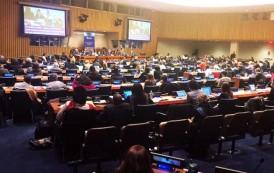 LBV contribui com debate sobre crise migratória na ONU