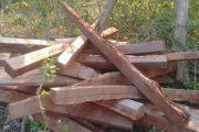 PMA autua e multa empresa por desmatamento ilegal em Corumbá (MS)